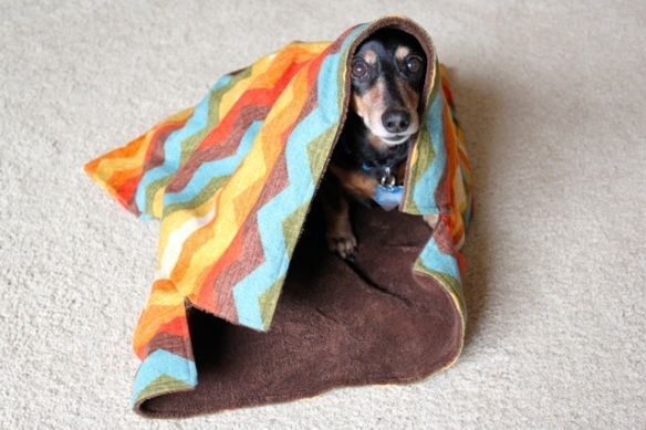 Doggie Sleep Sack